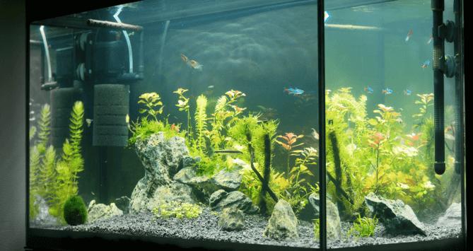 Submersible Aquarium Pump